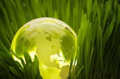 Ainda temos tempo de mudar essa forma de pensar, ainda é tempo de ver a Terra como ela é, como Nossa Mãe. Ainda dá tempo de lutar e salvar alguns de nossos irmãos de quatro pernas, vale a pena lutar pelo nosso planeta, junte-se a essa luta e você verá o quão recompensadora ela é.