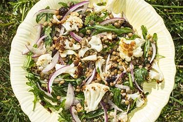 A salada de feijão de inverno é um prato simples e gostoso. Ela tambem e barata e nutritiva melhorando a qualidade das refeições.