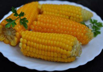 Os benefícios do milho para a saúde incluem o controle da diabetes, a prevenção de enfermidades referentes ao coração, redução da hipertensão e prevenção de defeitos do tubo neural em recém-nascidos.