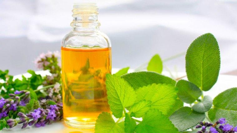 Os benefícios do óleo essencial de Melissa são atribuídos às suas propriedades como um antidepressivo, emenagogo, sedativo, antiespasmódico, estomacal, antibactericida, carminativo, diaforético, febrífugo, hipotensivo, sudorífico e tônico, entre outros. É um óleo extensivamente utilizado em quase todos os tipos de bálsamos devido às suas capacidades calmantes e aroma agradável.