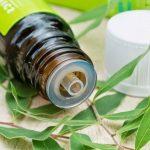 Uso comum do óleo da árvore do chá