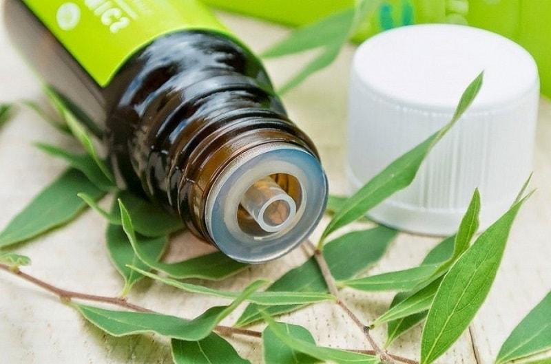 A administração oral do óleo da árvore do chá é perigosa para a saúde, por isso só é possível somente após consultar um especialista.