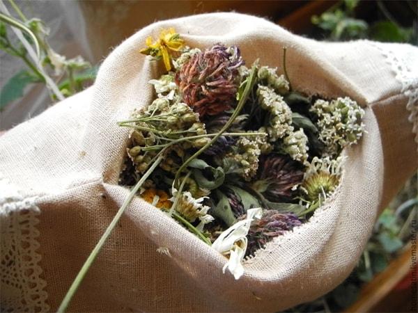 O poder mágico das ervas se tornou conhecido muito antes do aparecimento da indústria farmacológica. Com a ajuda de plantas,pessoas eram curadas