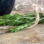 26 benefícios impressionantes do alecrim