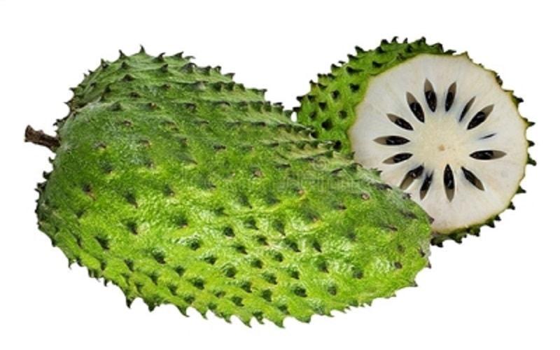 A graviola pode ter se tornado popular no Ocidente apenas recentemente, mas tem uma longa história em remédios e tratamentos à base de ervas.