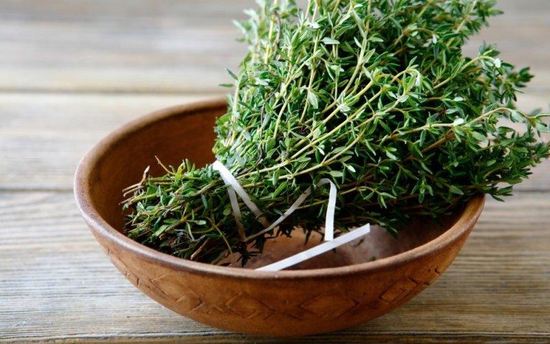 O tomilho é conhecido pelas propriedades curativas que possui, desde os tempos antigos. As folhas, flores e óleo essencial eram usados para tratar males.