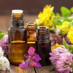 Óleos essenciais com propriedades antioxidantes