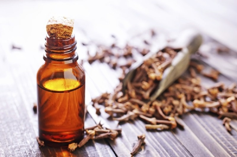 Óleo essencial de cravo é um dos óleos que você deve sempre ter em sua casa. Por quê? Porque esse óleo é o melhor e mais forte remédio da dor de dente.