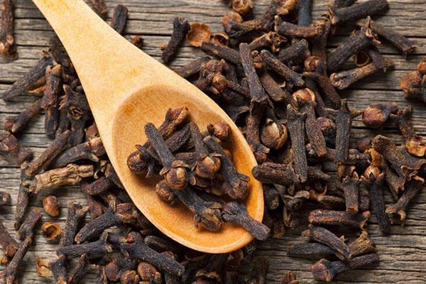 óleo essencial de cravo saúde pele acne