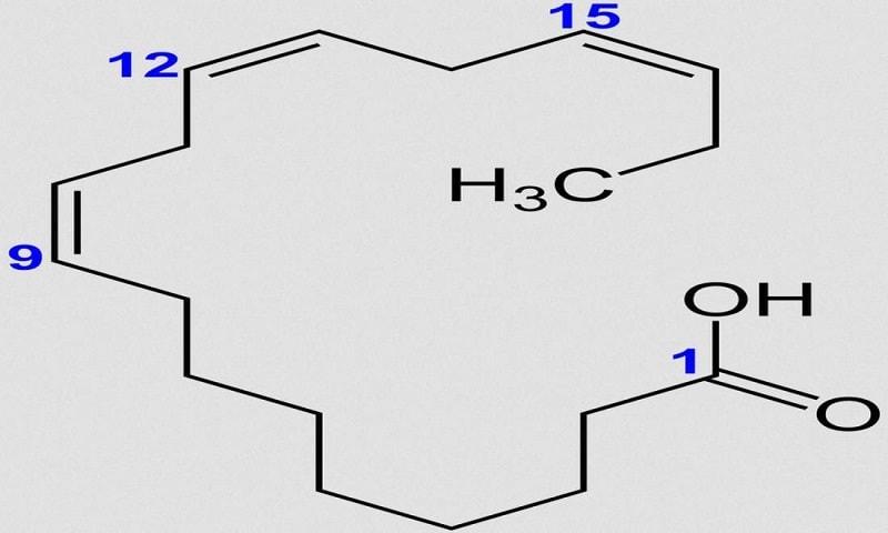 O ácido alfa-linolênico ou o ácido α-linolênico (ALA) é um dos dois ácidos graxos essenciais que o nosso corpo não consegue produzir sozinho.