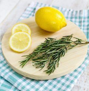 limão alecrim refrescancia aromatizadores caseiros