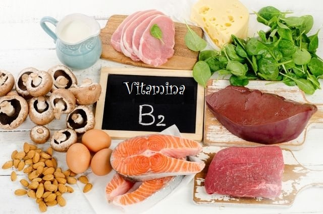 riboflavina dieta saúde