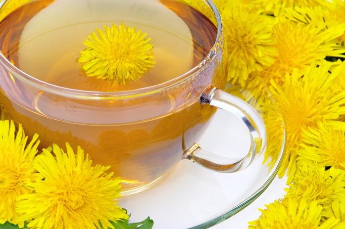 chá dente-de-leão diurético