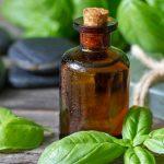 Os segredos do óleo essencial de manjericão
