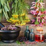 O princípio do impacto dos aromas no corpo humano