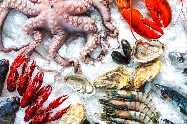 Vitamina B4  colina dieta frutos do mar cérebro