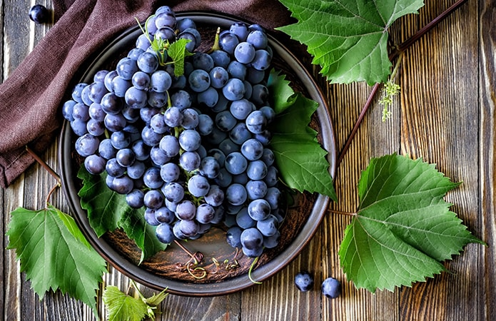 Óleo de semente de uva pele cabelos saúde antienvelhecimento acne