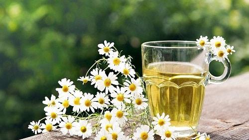 saude pele cabelos aromaterapia calmante relaxamento camomila óleo essencial