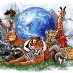 Como escolher um Animal Totem para lhe ajudar nas tarefas vitais