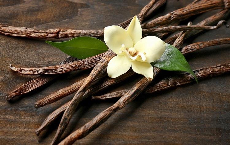 óleo essencial de baunilha aromaterapia saúde beleza