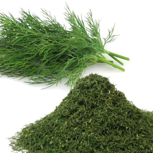 aromaterapia óleo essencial de endro calmante stress