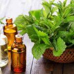 Óleo essencial de erva-cidreira ou Melissa