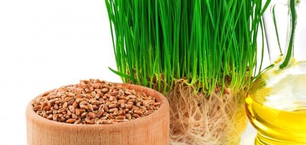 aromaterapia saúde beleza cabelos unhas pele