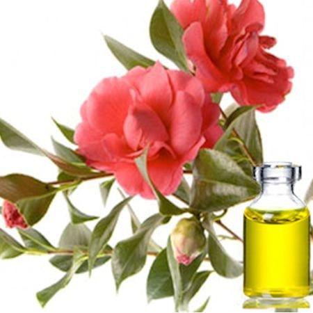 óleo de camelia óleo base pele rosto cabelo saúde