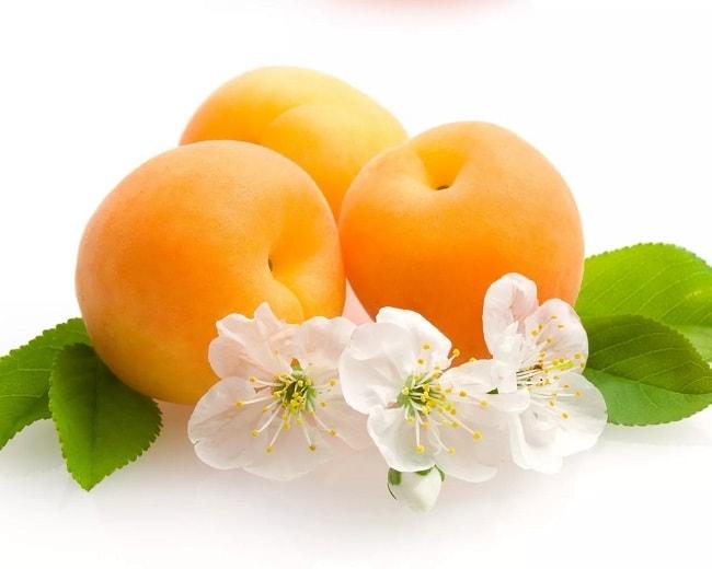 óleo de semente de damasco óleo base massagem saúde cabelos unha pele rosto