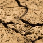 Pessoas do elemento Terra – caráter e como escolher uma chave