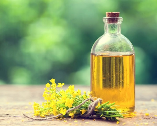 pele seca óleo base beleza saúde envelhecimento tratamento natural