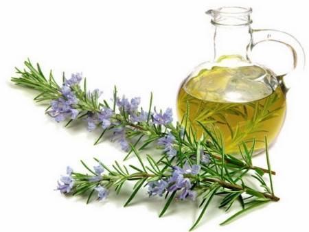 Óleo essencial alecrim aromaterapia cabelos pele rosto