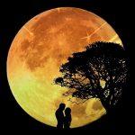 Rituais da Lua