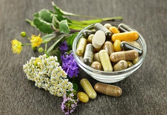 adaptógenos imunidade adaptação saúde corpo